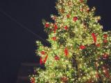 デュッセルドルフのクリスマスマーケット007